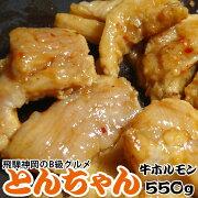 飛騨神岡とんちゃんモツ鍋
