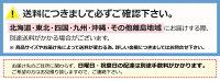 ツインオーダーロールスクリーン6種【ロールカーテン】【ロールブラインド】【ツインロールスクリーン】