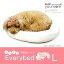 【L】天使のベッド Everybed(エブリベッド) Lサイズ 触り心地のいい ふわサラ マット 丸洗いOK クッション ドッググ…