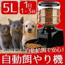 【送料無料】5L 自動給餌機 オートペットフィーダー 犬 猫 フードディスペンサー 02P03Dec16
