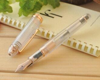 """Platinum PLATINUM #3776 century """"nice"""" fountain pen f/m size PNB-20000R"""