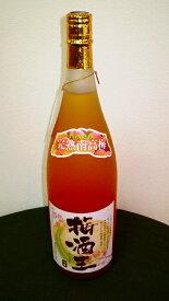 梅酒王 1800ml【人気No1】【薫りを自然のまま残した無濾過梅酒】