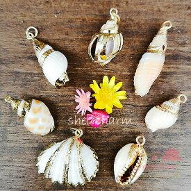 海からの贈り物 天然の貝殻チャーム 全7種 1個 /マリンモチーフ/シェル/ペンダントトップ/ネックレス/ピアス/アクセアリー/パーツ/材料/SCH-24