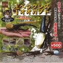 1/1ヘラクレスオオカブト全3種セット6月予約昆虫SO-TAガチャポンガチャガチャガシャポン