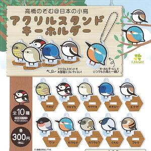 高橋のぞむ 日本の小鳥 アクリル スタンド キーホルダー 全10種+ディスプレイ台紙セット エフドットハート ガチャポン ガチャガチャ ガシャポン
