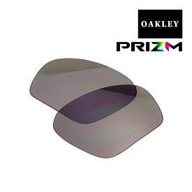 オークリー フィールドジャケット サングラス 交換レンズ プリズム 102-900-003 OAKLEY FIELD JACKET スポーツサングラス PRIZM GREY