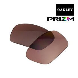 【最大2000円OFFクーポン配布中】 オークリー ストレートリンク サングラス 交換レンズ プリズム 偏光 102-396-027 OAKLEY STRAIGHTLINK PRIZM DAILY POLARIZED