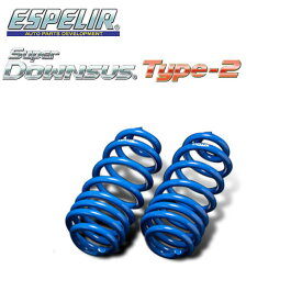 ESPELIR エスペリア スーパーダウンサス タイプ2 フロントのみ デリカD:5 CV5W H19/12〜H22/5 4B12 4WD 2.4L シャモニー