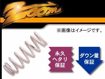 zoom/ズーム 230kgf/mm^2 ダウンフォースHG 1台分 フォード/FORD FESTIVA MINI WAGON DY3R ZJ-VE H15/11〜 4WD 1.3L