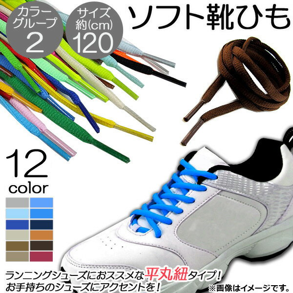 AP ソフト靴ひも 約120CM 平丸紐タイプ ランニングシューズにおススメ♪ カラーグループ2 AP-UJ0041-120CM 入数:1セット(2本)