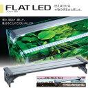 コトブキ フラットLED 300 シルバー 30cm 水槽用照明・ライト 『照明・ライト』