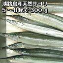淡路島産さより(サヨリ・氷〆)5〜8匹計約300g