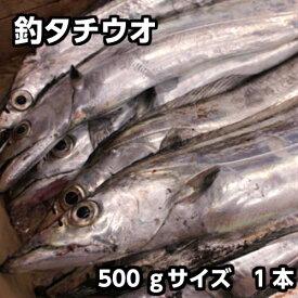 【お刺身用】淡路産(釣)タチウオ約500g中サイズ1本(たちうお・太刀魚・つり)