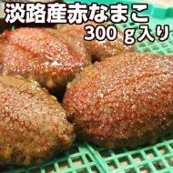 冬の珍味!最高級【赤】淡路島産赤なまこ1〜3個約300g当店特製ナマコ3杯酢付き♪活きたまま発送いたします