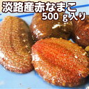 淡路産活赤なまこ(アカナマコ)2〜5個で約500g素もぐり漁獲品(海鼠 活)