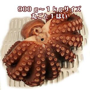 淡路島産湯だこ(ボイルタコ)丸ごと1はい900g〜1kg(ゆでだこ・地だこ・たこ・ゆだこ)