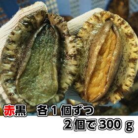 淡路産天然あわび(活)赤と黒セット2個で約300g(アカアワビ・クロアワビ)