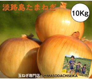 兵庫県淡路島産 玉ねぎ 10Kg たまねぎ 淡路島 玉葱 タマネギ