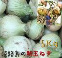 新玉ねぎ 5Kg 兵庫県 淡路島産 淡路島新玉ねぎたまねぎ 玉葱 タマネギ