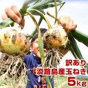 【訳あり】 玉ねぎ 5kg 兵庫県 淡路島産 たまねぎ 淡路島 玉葱 タマネギ