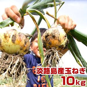 玉ねぎ 10kg 淡路島産 たまねぎ 淡路島 タマネギ 淡路 玉葱 玉ネギ 10キロ