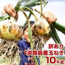 【訳あり】 玉ねぎ 10kg 兵庫県 淡路島産 タマネギ 淡路 淡路島 たまねぎ 玉葱 10キロ