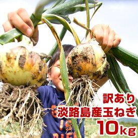 【訳あり】 玉ねぎ 10kg 兵庫県 淡路島産 淡路島たまねぎ 玉葱 タマネギ 淡路