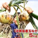 玉ねぎ 5Kg 兵庫県 淡路島産 淡路島玉ねぎたまねぎ 玉葱 タマネギ