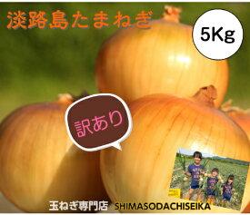 【訳あり】 兵庫県淡路島産 玉ねぎ5kg たまねぎ 淡路島 玉葱 タマネギ