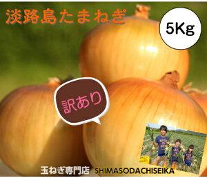 【訳あり】 玉ねぎ 5kg 兵庫県淡路島産 たまねぎ 淡路島 玉葱 タマネギ