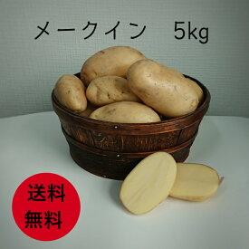 【送料無料】メークイン 5kg じゃがいも ジャガイモ 新じゃが 淡路島産 馬鈴薯 ばれいしょ 産地直送 お中元