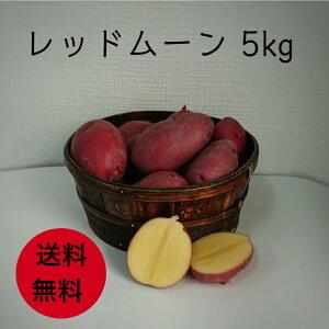 【送料無料】レッドムーン 5kg じゃがいも ジャガイモ 新じゃが 淡路島産 産地直送 赤皮じゃがいも ばれいしょ 馬鈴薯 お中元