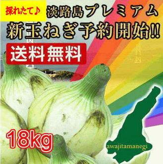 Awaji island premium onions 18 kg ♦ catering business for onions, Awaji onions, Awaji island onion, onion, onion