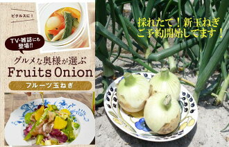 -Lunch at submited here! Awaji island fruit onions 9 kg & onion dressing set onion, onion