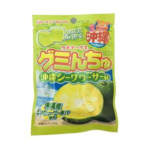 ★ポイント2倍★ウチナーグミ グミんちゅ 40g(沖縄シークヮーサー味)