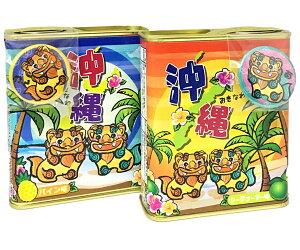 沖縄ドロップシーサー缶バッチ付きシークヮーサ味、パイン味各85グラム入