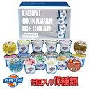 ブルーシールギフトセット18(110ml×18個入 16種類 18個入り) 送料無料お中元・敬老の日 ギフトにどうぞ沖縄のアイスクリーム アイス…