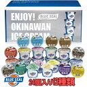 ブルーシールギフトセット24(110ml 12品×2個) 送料無料お中元・敬老の日 ギフトにどうぞ沖縄のアイスクリーム アイスケーキ ギフト …