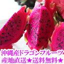 【送料無料】沖縄産ドラゴンフルーツ(レッドピタヤ・レッドドラゴンフルーツ)2.0kg前後(4〜8個)ギフト(贈答)や沖…