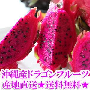 沖縄産ドラゴンフルーツ(レッドピタヤ・レッドドラゴンフルーツ)2.0kg前後(4〜8個)送料無料ギフト(贈答)や沖縄土産で人気の果物(完熟 くだもの・沖縄食材 国産) 送料無料市場 お試し ス