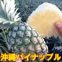沖縄産パイナップルジューシーパインスムースカイエン(ハワイ種)2,3玉入り(3kg以上)残暑見舞い ギフト 送料無料