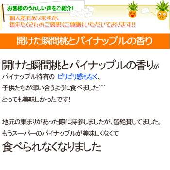 沖縄産ピーチパイン(クリームーパイン)沖縄果物(フルーツ)