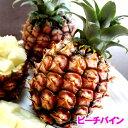 沖縄産ピーチパイン(パイナップル) 安心保証付き 送料無料お徳用5kgサイズ(4〜10個)自社管理農園から直送だから安心保証付き沖縄産フル…