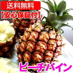 沖縄産ピーチパイン(パイナップル) 安心保証付き 送料無料お試し1.5kgサイズ(2〜4個)自社管理農園から直送だから安心保証付き沖縄産フルーツ パイナップルの通販はお任せ下さい ギフト 母の