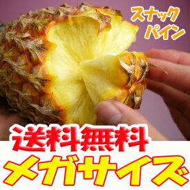 スナックパイン 沖縄産 パイナップル 約5.0kg 送料無料自社管理農園から直送だから安心保証付き沖縄産フルーツ パイナップルの通販はお任せ下さい ギフト