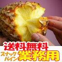 【業務用】沖縄産スナックパイン約20.0kg(16〜30個)自社管理農園から直送だから安心保証付き沖縄産フルーツ パイナップルの通販はお任せ下さい ギフト