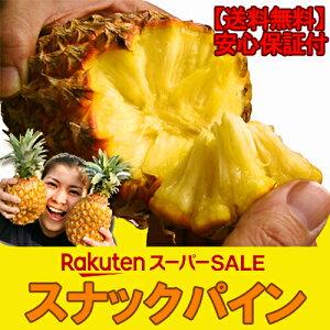 【送料無料】沖縄産スナックパイン1玉(500g〜600g)パイナップル