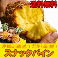 【送料無料】沖縄産スナックパイン約1.5kg自社管理農...