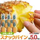 スナックパイン 沖縄産 パイナップル 約5.0kg 送料無料自社管理農園から直送だから安心保証付き沖縄産フルーツ パイナップル 母の日の…