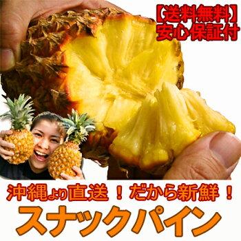 沖縄産スナックパイン(パイナップル)沖縄フルーツ(果物)